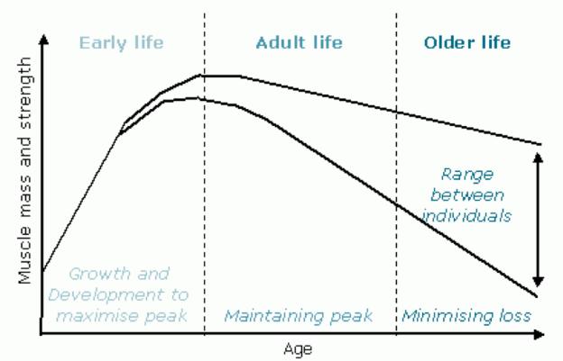 age decline